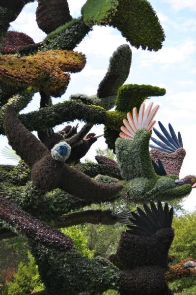 MIM2013_arbre aux oiseaux