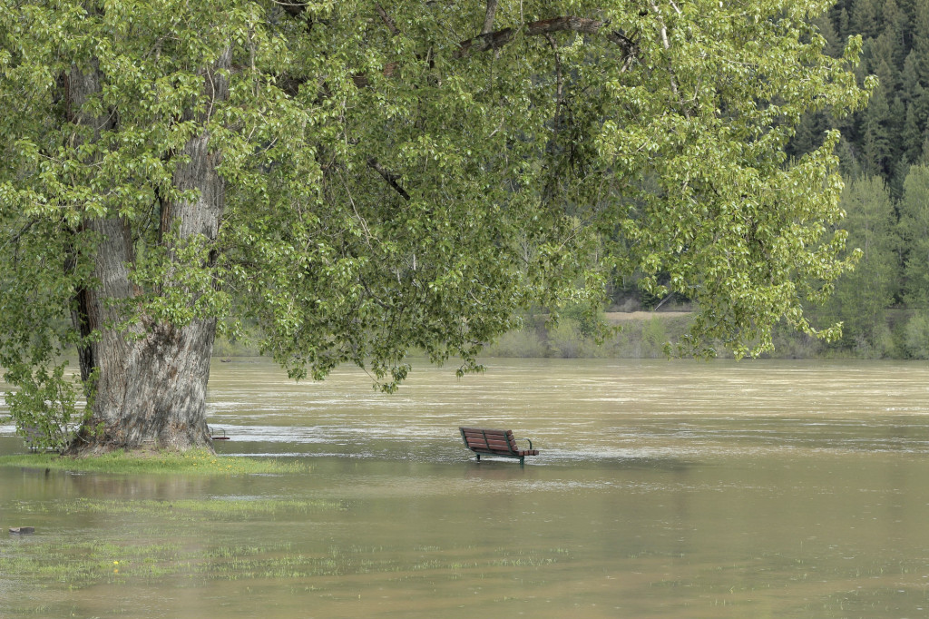 A photograph of the Fraser River in Prince George, British Columbia, Canada that has flooded its bank. Credit: ©iStockphoto.com/Cathy Britcliffe