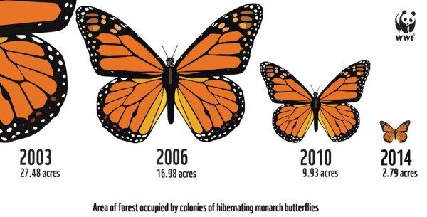 EN_Infographic_Acres_ Monarchs 2015