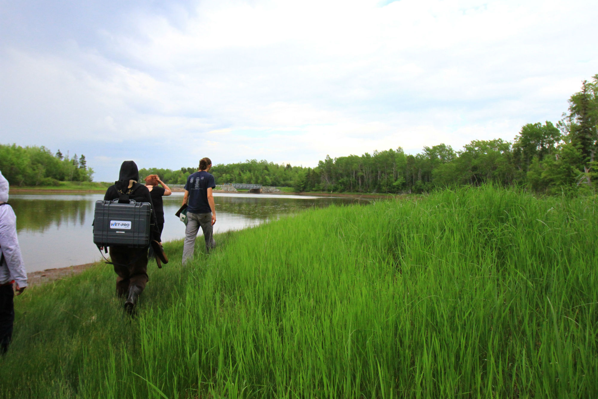 Volunteers Walking to Monitoring Location in Pictou, Nova Scotia. © Oliver Woods