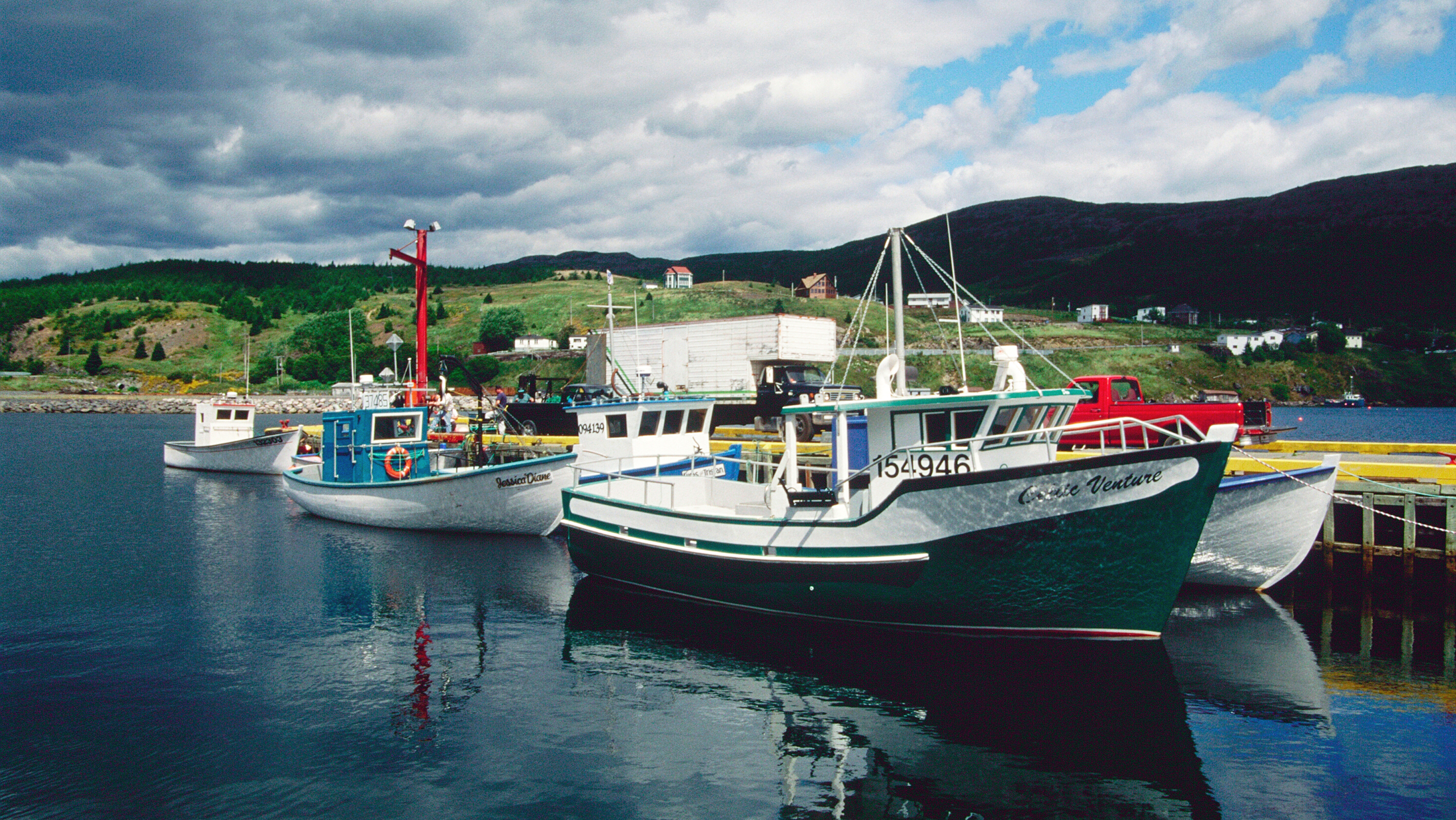 Moored fishing boats in Newfoundland