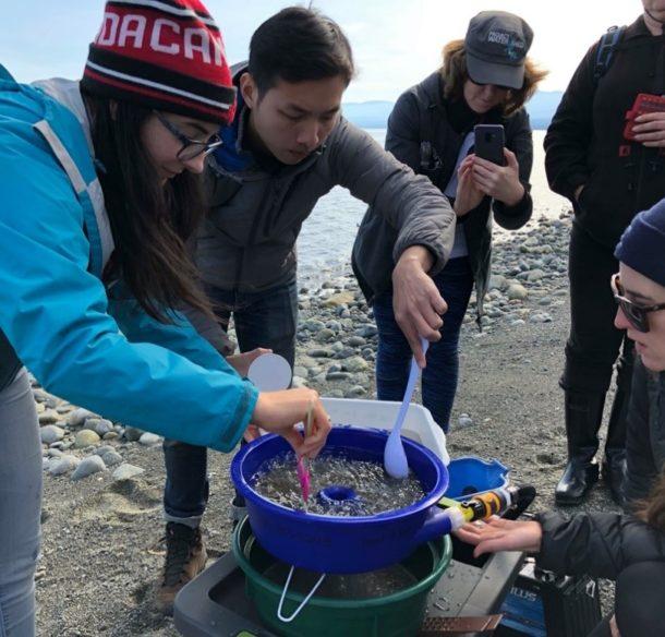 Forage Fish Spawning Monitoring in the Salish Sea